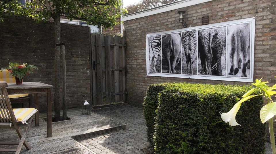 Impression Galerie Wildlife: Kahrseiten